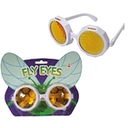 Eyes of fly glasses