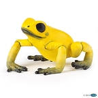 Fig Equatorial Yellow Frog